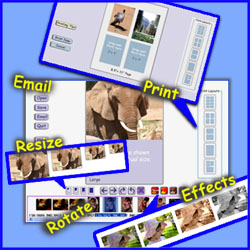 resize print digital photo editor